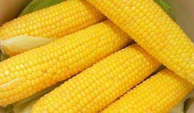 Как и сколько нужно варить кукурузу?