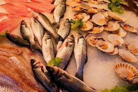 Как правильно хранить рыбу: сроки и условия