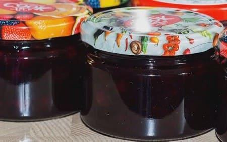 Желе из чёрной смородины — 9 вкусных рецептов десерта